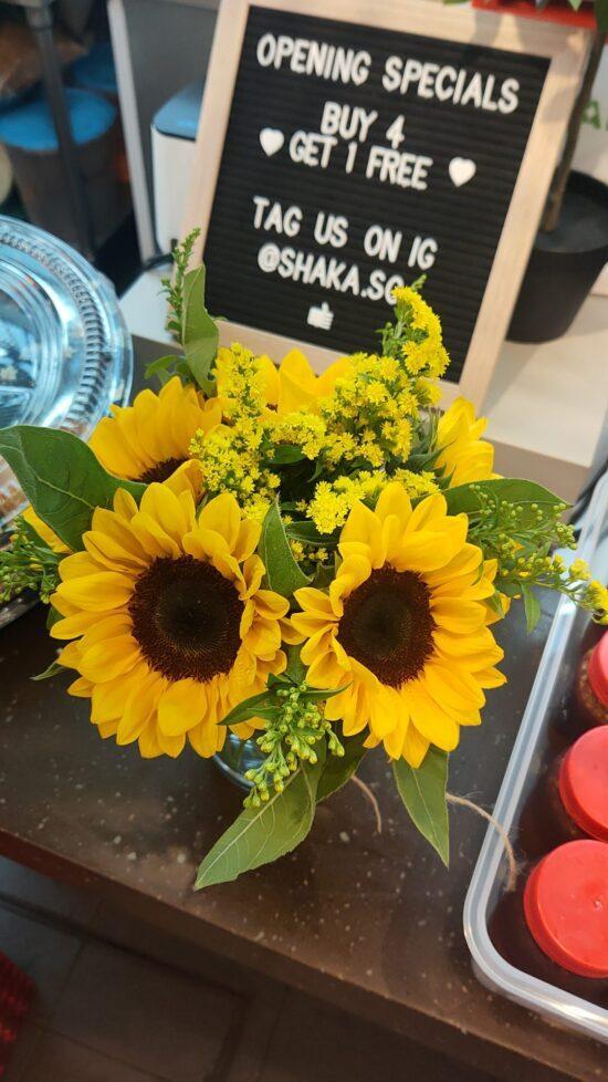 WhatsApp Image Blooming Sun